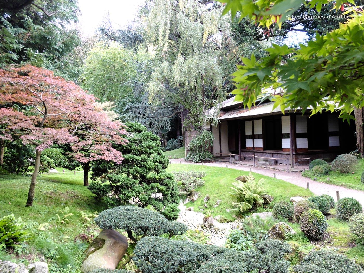 Blogdscf2074 - Stephane sauvage jardin boulogne billancourt ...