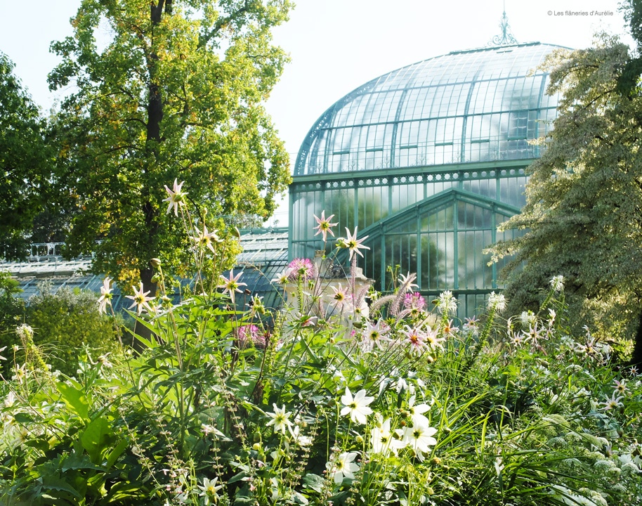 Bucolic Paris #6 : the greenhouses of Auteuil
