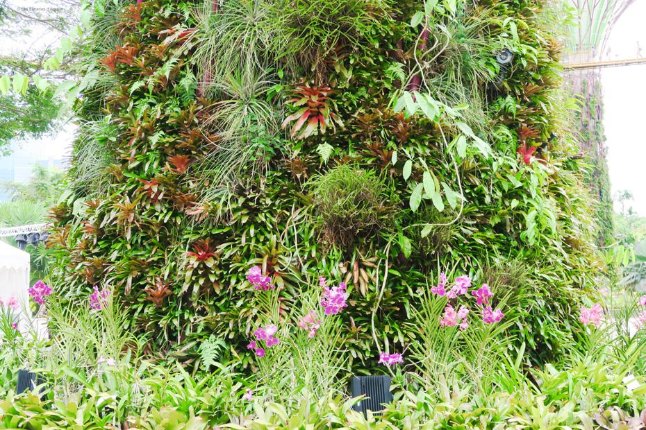 gardensbythebay3