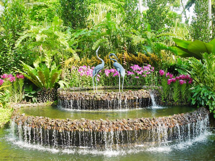 orchidgarden16