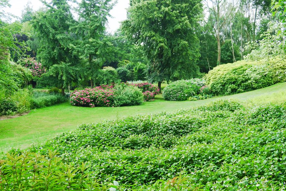 jardin16